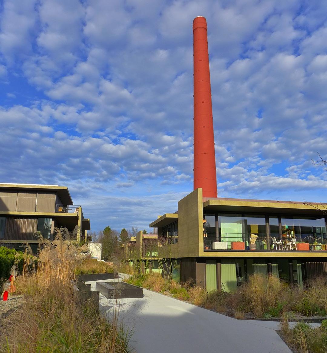 Baumanagement-Horgen-am-Seeufer-Umgebungsgestaltung